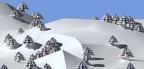 sapins dans la neige